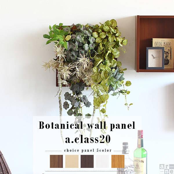 光触媒 Botanical a.class 20