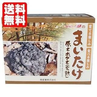 マイタケ栽培キット 【まいたけの成る木(短木)】
