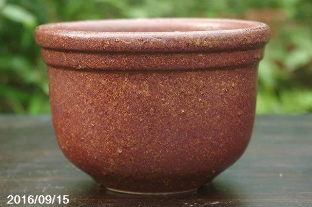 鉄釉丸鉢(桜草鉢) 5号