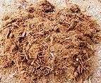 杉の樹皮から生まれた天然の培養資材【クリプトモス】