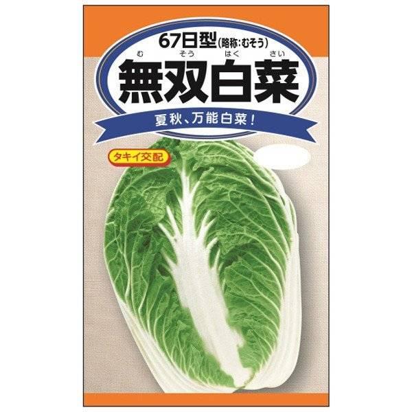 無双白菜 万能品種