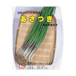 あさつき (アサツキ) 約500g