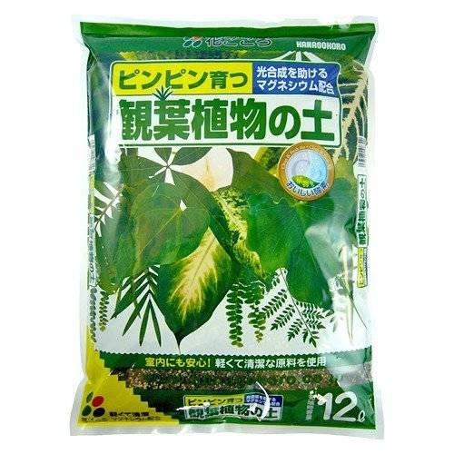 観葉植物の土 12L 【花ごころ】