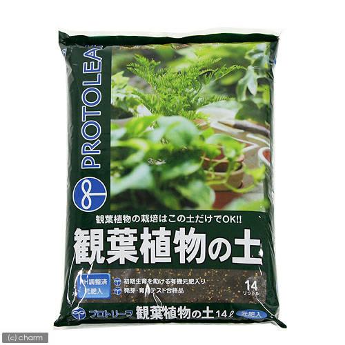 観葉植物の土 14L プロトリーフ