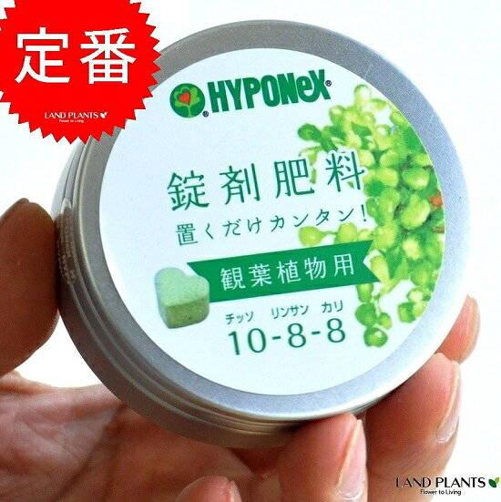 HYPONeX ガジュマルの肥料 観葉植物用