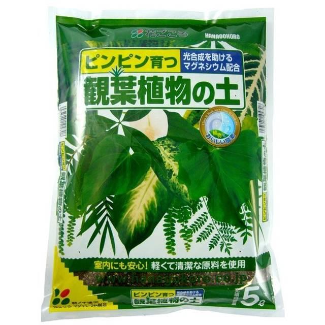 観葉植物の土5L【花ごころ】