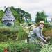 ガーデニングのプロが選んだ庭づくりを楽しく快適にするMYガーデンアイテム「上野ファーム」上野砂由紀さん - ガーデニングのいいモノ見つかる Garché