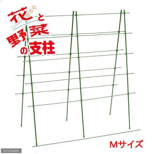 緑のカーテン 花と野菜の支柱 M(W70×H90cm)