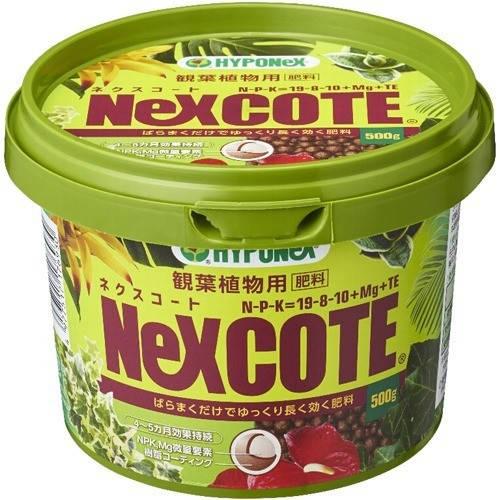 ハイポネックス ネクスコート 観葉植物用 ( 500g )
