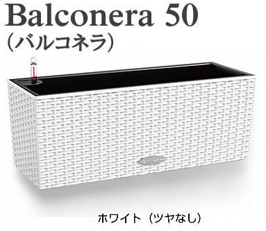 レチューザ バルコネラ 50 灌水セット付