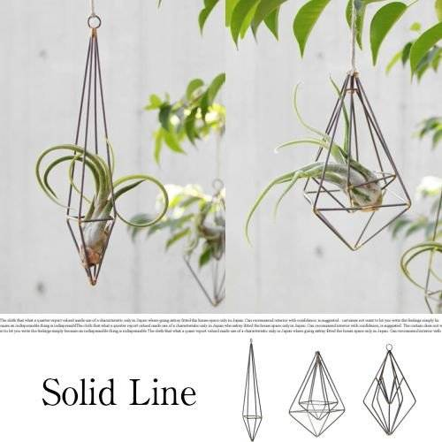 Solid Line SL-01